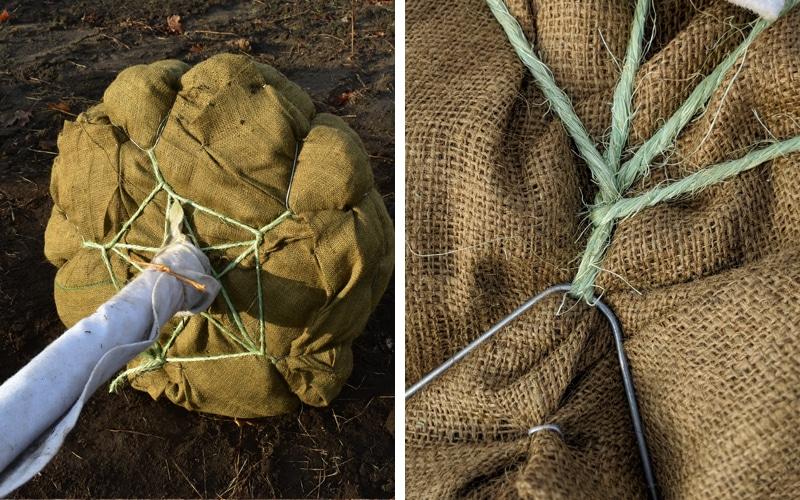Tying wire tree baskets